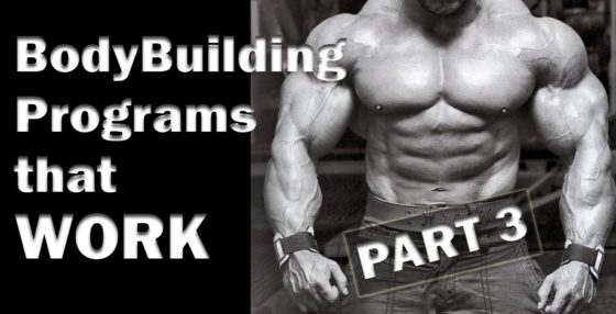 BodyBuilding Programs that WORK Part 3