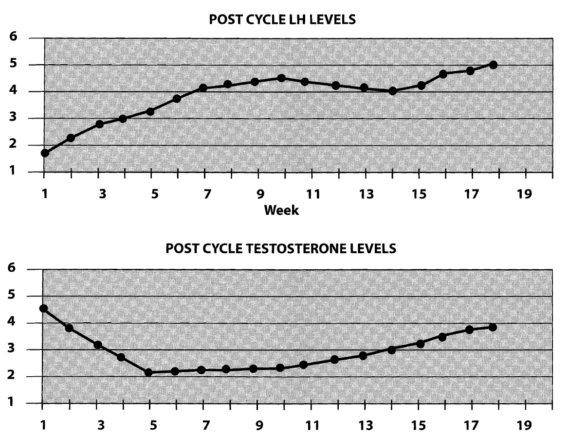 Post cycle therapy nolvadex clomid dosage pct