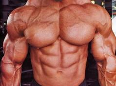 Muscle Enzyme