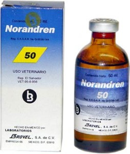 noradren50f-WHERE TO BUY STEROIDS ONLINE