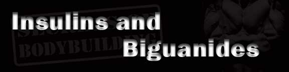 Insulins and Biguanides
